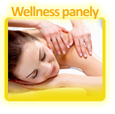 Wellness panely